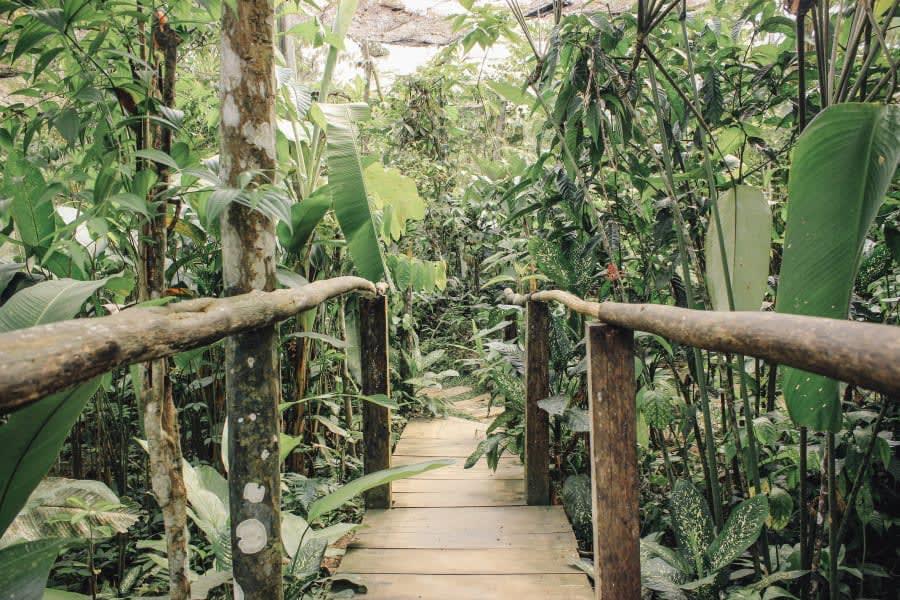 Libertad Jungle Lodge Libertad Jungle Lodge Iquitos Peru undefined
