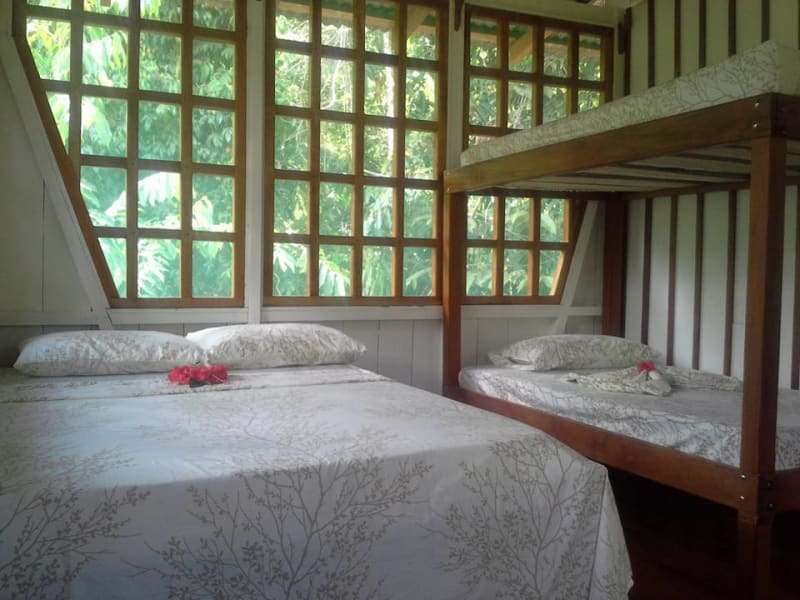 Lokal Adventures Jungle Yoga Adventure Los Planes Costa Rica Accommodations at Naguala.