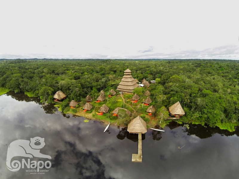 Napo Wildlife Center Ecolodge Napo Wildlife and Ecolodge Experience in Yasuni National Park Yasuni National Park Ecuador undefined