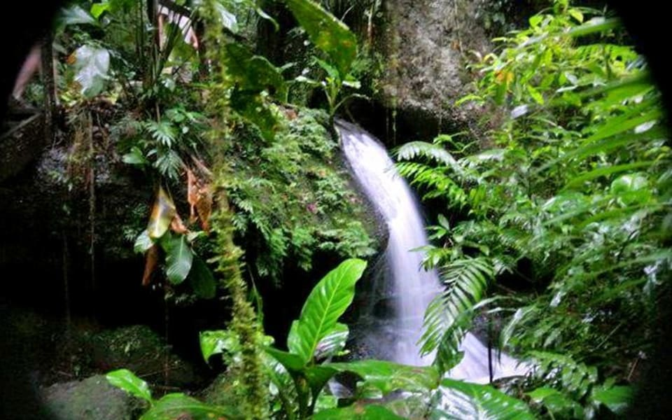 Matagalpa Tours La Canavalia Farm, La Sombra Ecolodge and Peñas Blancas Matagalpa Nicaragua Waterfall in Penas Blancas