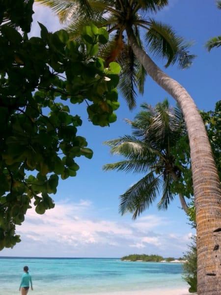 Secret Paradise Maldives Culture Break on Local Island of Guraidhoo Guraidhoo Maldives