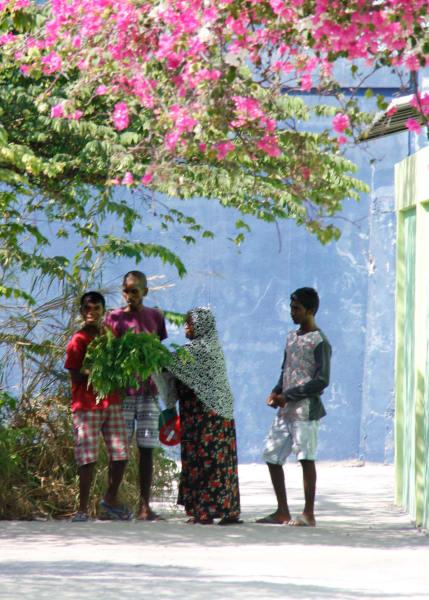 Secret Paradise Maldives South Male Island Hopping Male Maldives undefined
