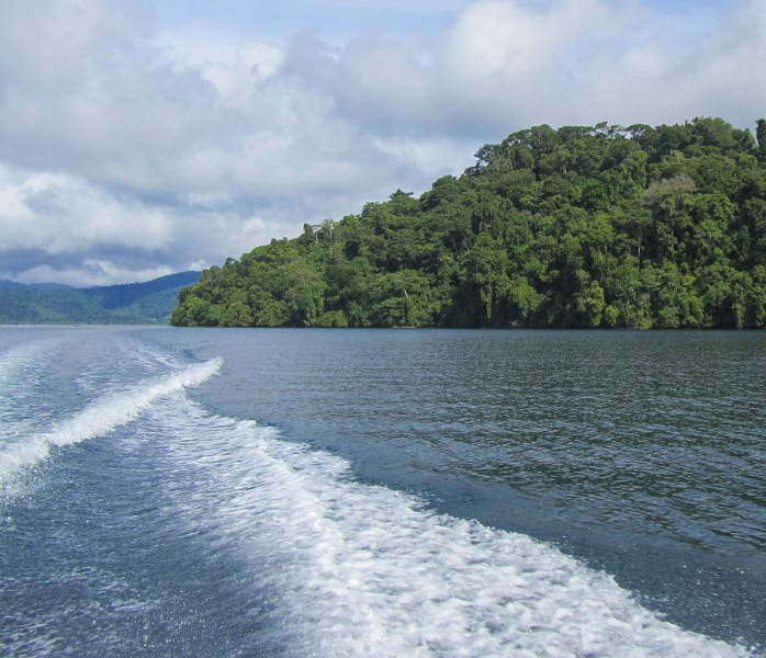 Osa Wild Travel Corcovado Trek and Overnight in Sirena Ranger Station Puerto Jimenez to Drake Bay Costa Rica undefined