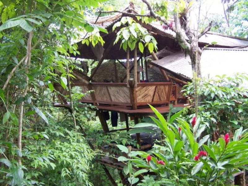 Rancho Mastatal  Eco-Lodge Stay with Rancho Mastatal Mastatal Costa Rica The Hooch