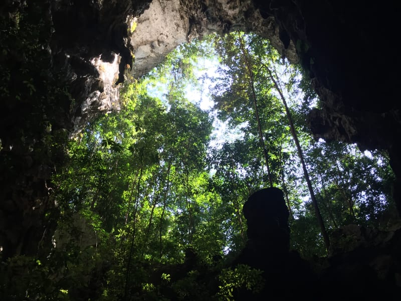 Lokal Adventures Immersive Guatemalan Culture and Nature Adventure Antigua to Peten Guatemala Looking out of a cave into the jungle!
