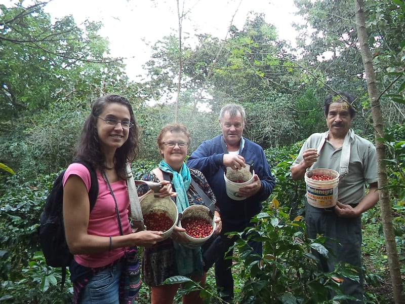Cocla Tours Coffee Tour from Cusco Cusco Peru null