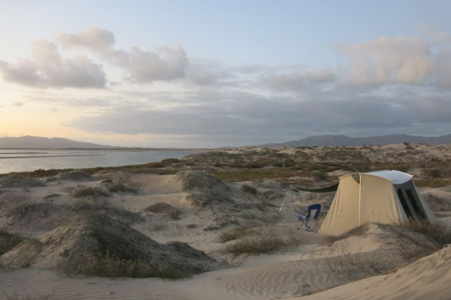 RED Travel Mexico Baja Sea Turtles, Gray Whales and Island Getaway La Paz Mexico null
