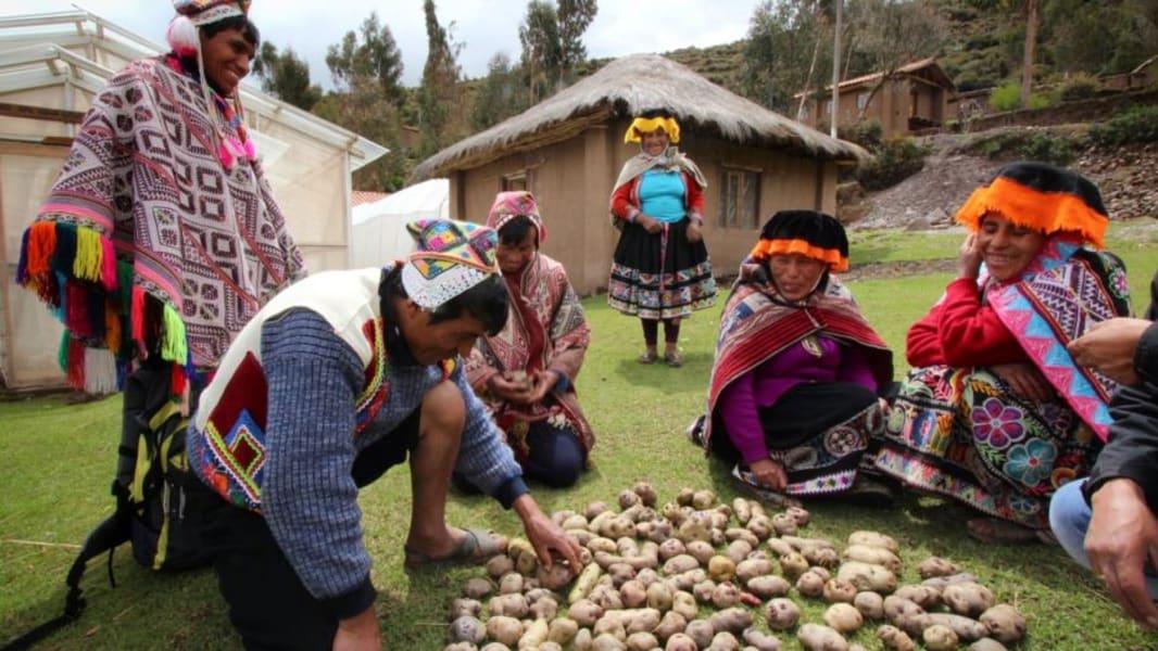 Cocla Tours Visit Parque de Papa, Pisac Ruins and Local Artisans Pisac and Parque de Papa Peru undefined