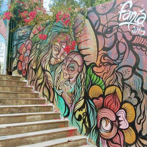 Haku Tours Lima's Color & Flavors Tour Lima Peru undefined