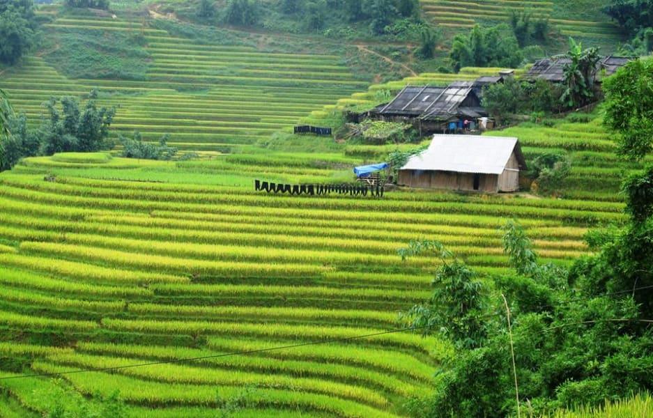 Sapa O'Chau Sapa Vietnam undefined