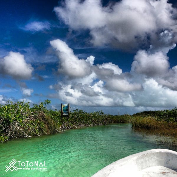 Totonal Viajes Explore Tulum's Nature: Cenotes and Caribbean Biosphere Tulum Mexico Exploring the ancient canals of the Sian Ka'an Biosphere