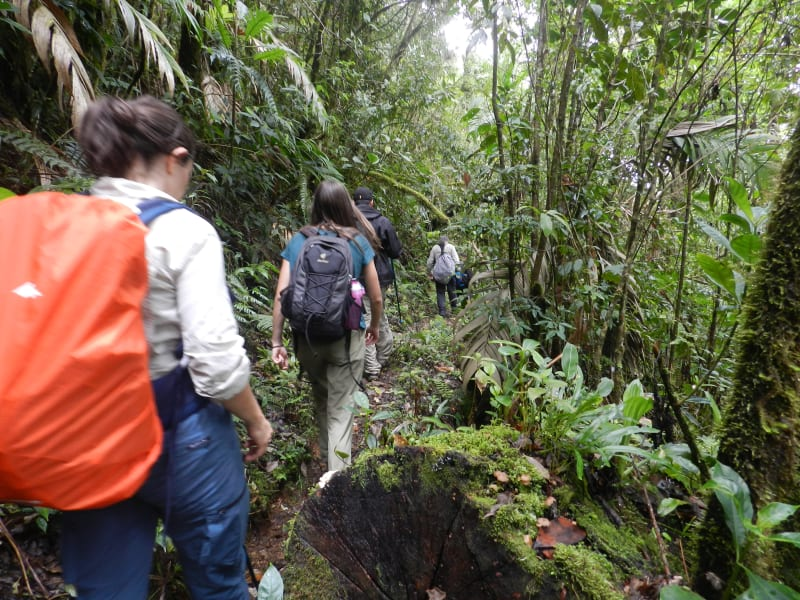 MARO Experiences Trekking, Nature and Local Life in Rural Costa Rica San Jose > Providencia > Manuel Antonio Costa Rica undefined