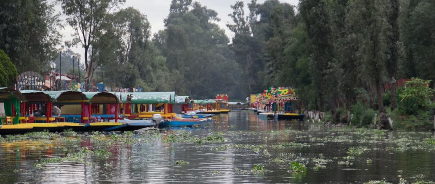 De la Chinampa Xochimilco Floating Gardens, Canals and Local Food Mexico City Mexico Photo credit: Naomi Tomky, Smithsonian