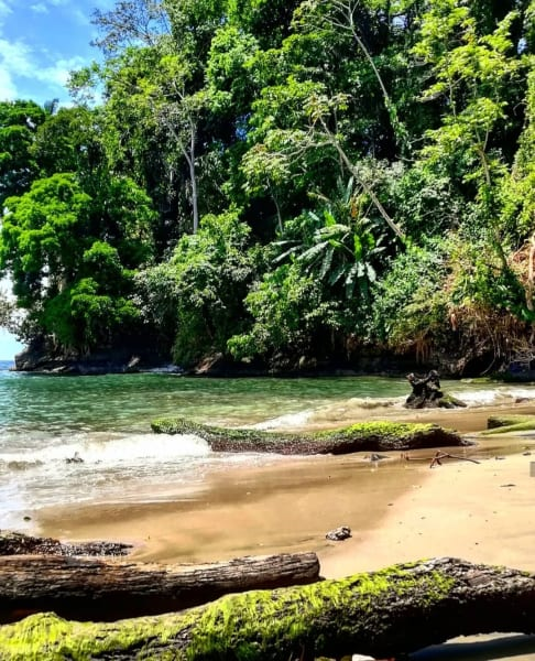 MARO Experiences Caribbean Natural & Cultural Wonders Pacaure River to Puerto Viejo Costa Rica undefined