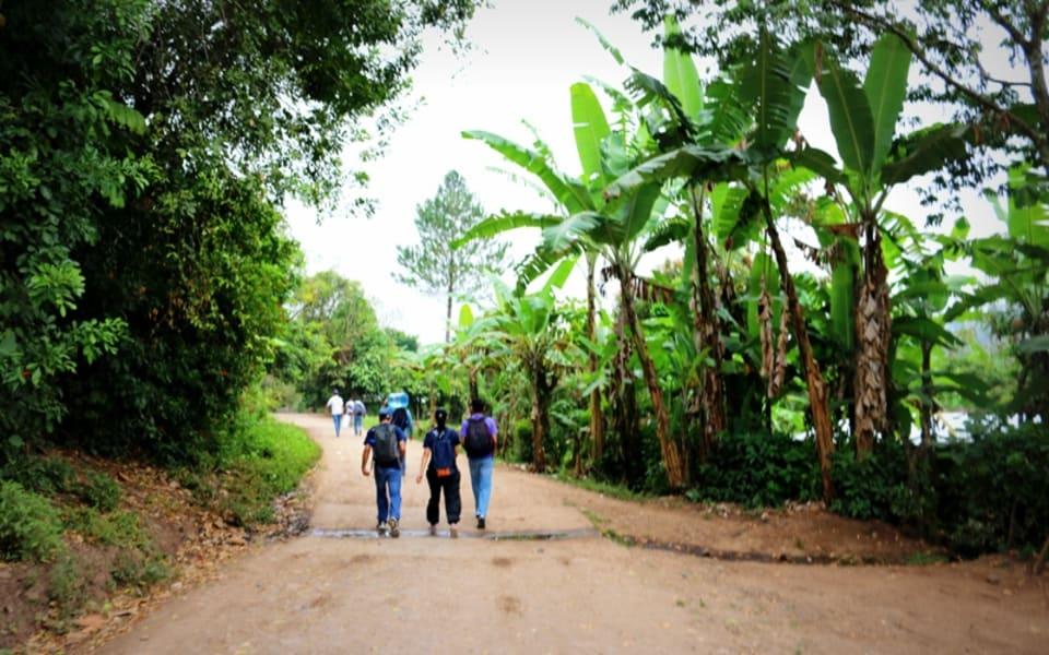Matagalpa Tours La Canavalia Farm, La Sombra Ecolodge and Peñas Blancas Matagalpa Nicaragua Hiking in La Corona