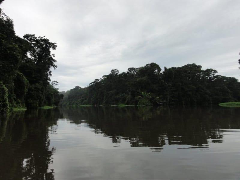 La Casona de Tortuguero Tortuguero Costa Rica undefined