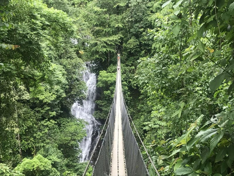 MARO Experiences Authentic Cultures of Costa Rica San Jose > Quepos > Miramar > Santa Barbara > Playa Negra Costa Rica undefined