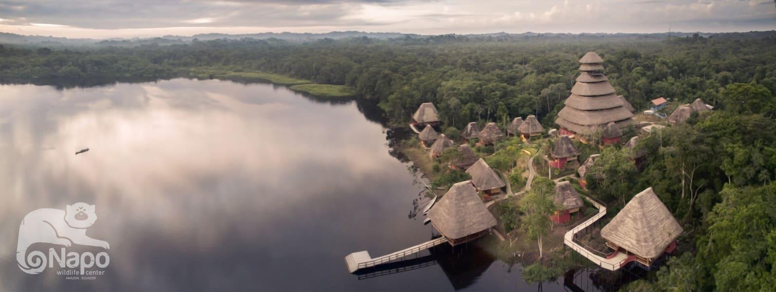 Napo Wildlife Center Ecolodge Napo Wildlife and Ecolodge Experience in Yasuni National Park Yasuni National Park Ecuador undefined