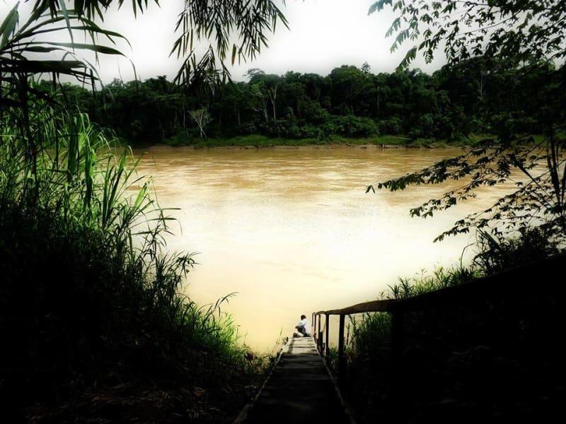 Inotawa Expeditions and Lodge Tambopata Reserve Peru null