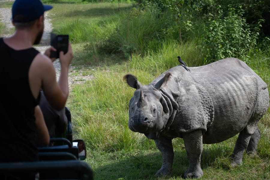 Royal Mountain Travel Experience the Culture of Nepal: An All-Women Adventure with Victoria Hart Kathmandu Nepal Getting up close for great wildlife shots