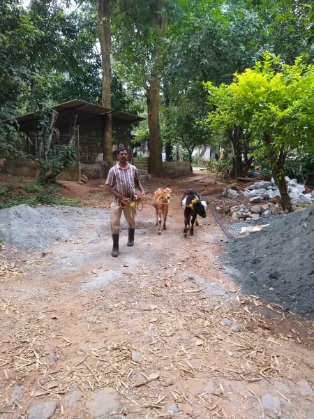Nativefolks Explore the Nilgiri Mountains: from Kerala to Tamil Nadu Wayanad India undefined