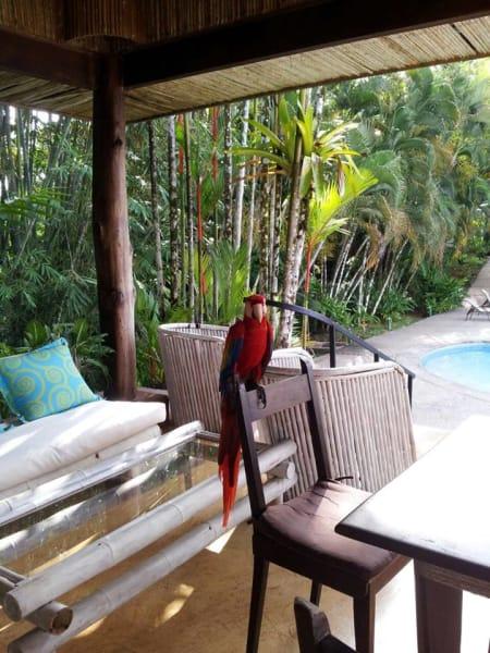Villas Gaia Playa Tortuga Costa Rica undefined