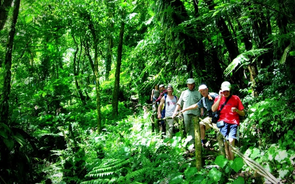 "Matagalpa Tours A Paradise in the Mountains of Northern Nicaragua Matagalpa Nicaragua Hiking in the ""selva negra"" (black forest)"
