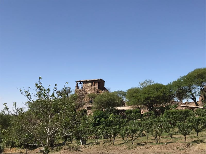 Origins Argentina Stay with Local Winemakers in Calchaqui Valley Salta and Cafayate Argentina undefined