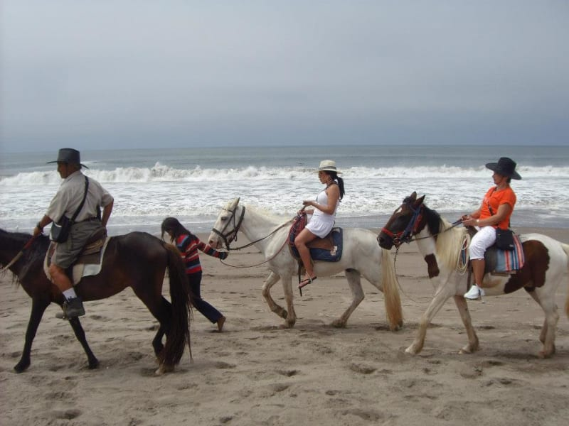 Haku Tours Lima  Peru Horseback riding tour