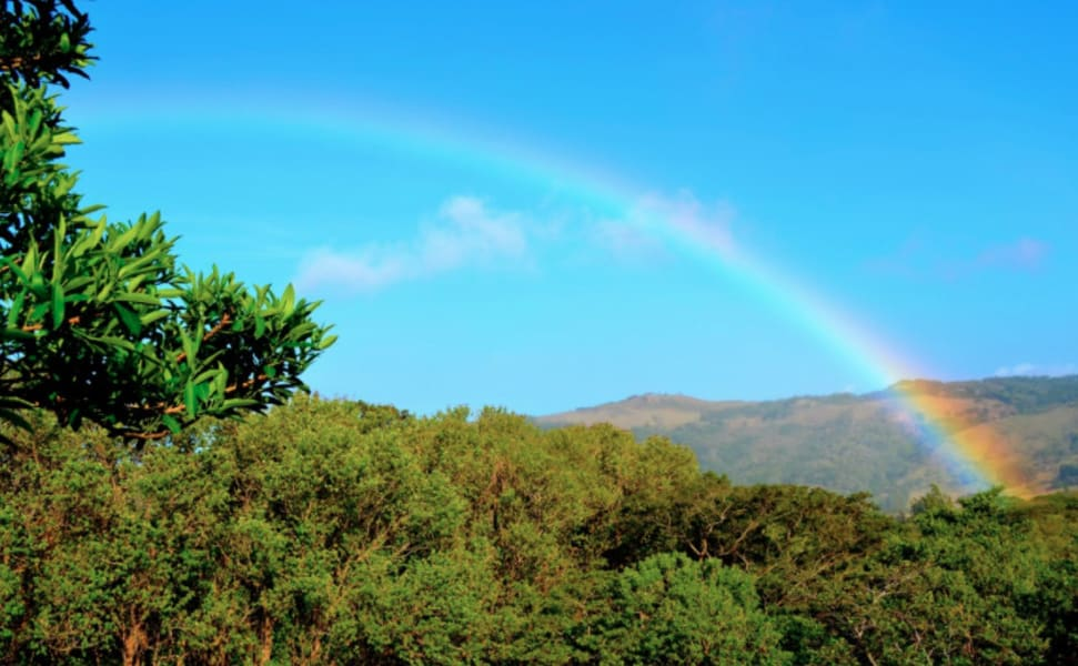 Cabañas Valle Campanas Monteverde Costa Rica undefined