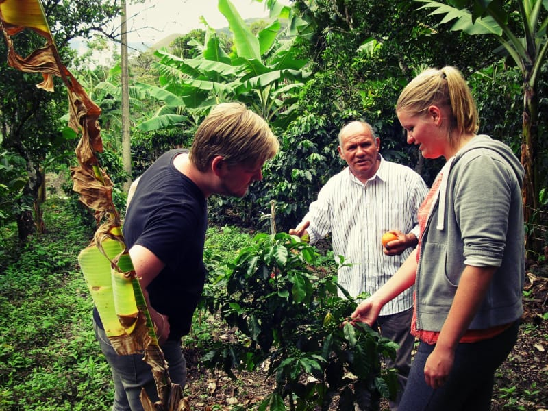 Cocla Tours Coffee or Cacao Tour in the Jungle of Cusco Cusco Peru null