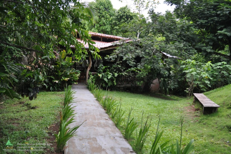 ACTUAR Cerro Escondido Jungle Lodge and Hiking Adventure Jicaral Costa Rica null