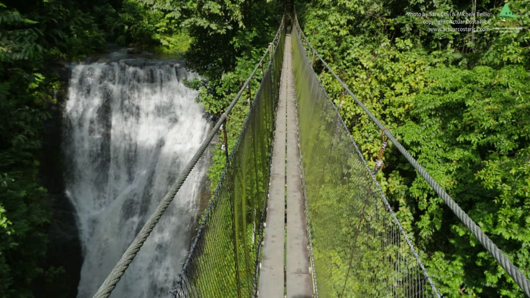 ACTUAR Los Campesinos Hanging Bridge and Waterfalls Quebrada Arroyo Costa Rica null