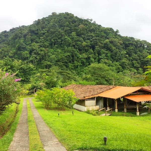 Rancho Margot Guided Tour of a Sustainable, Beyond Organic Ranch La Castilla Costa Rica undefined