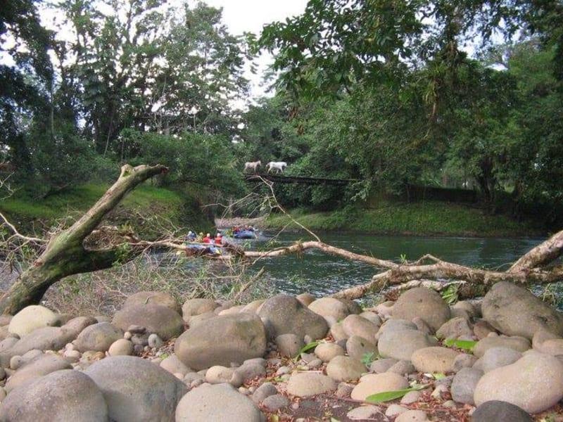 Chilamate Eco-Retreat Eco-Retreat along the Sarapiqui River  Sarapiqui Costa Rica undefined