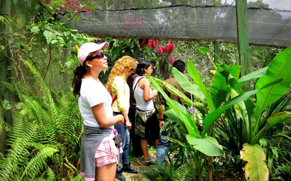 Matagalpa Tours A Paradise in the Mountains of Northern Nicaragua Matagalpa Nicaragua undefined