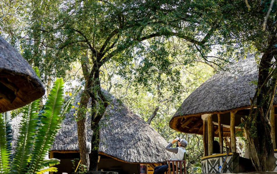Transfrontier Parks Destinations Limpopo Wildlife and Cultural Adventure Phalaborwa South Africa Soaking in nature at Madjadji Camp