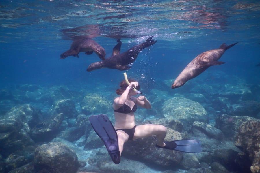 RED Travel Mexico Espíritu Santo Island Getaway La Paz Mexico Snorkeling in La Paz