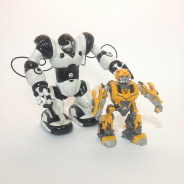1: Toy Robot Doll