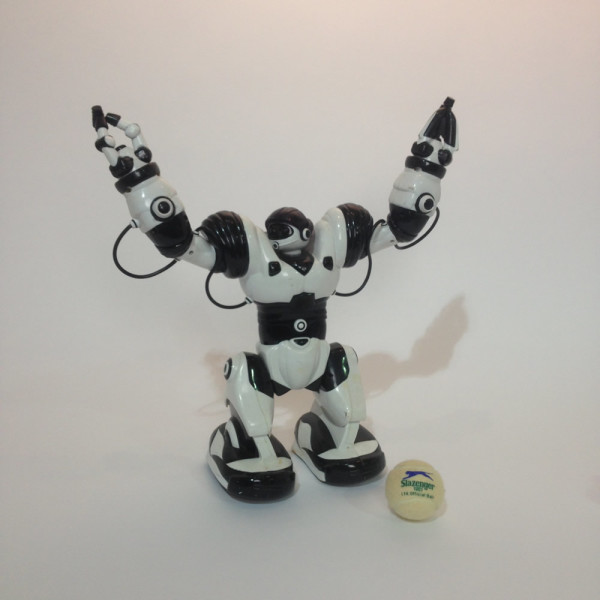 2: Toy Robot Doll