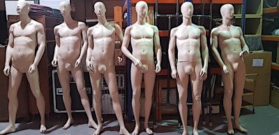 Full bodied male mannequins