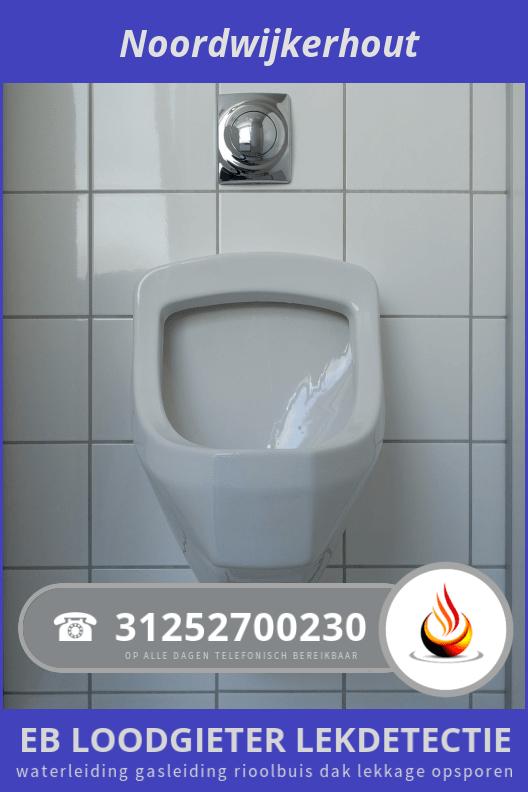 Waterlekkage Opsporen Noordwijkerhout 295 0252700230