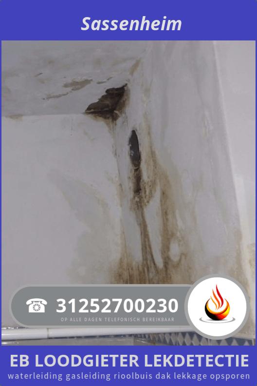 Waterlekkage Opsporen Sassenheim 295 0252700230