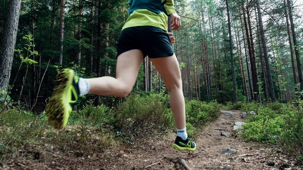 Artikler og treningsprogrammer