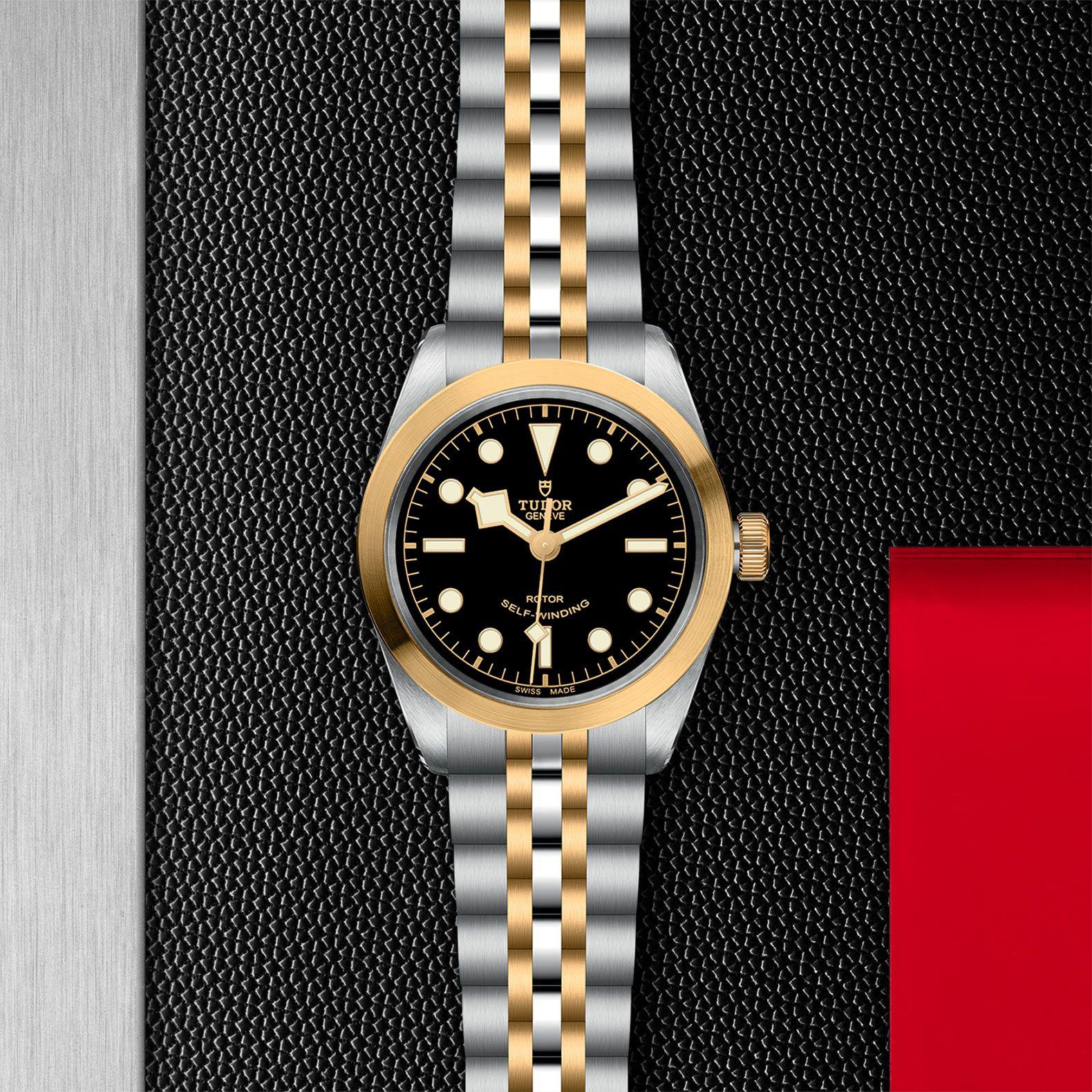 BLACK BAY S&G 36 79503 - 0001