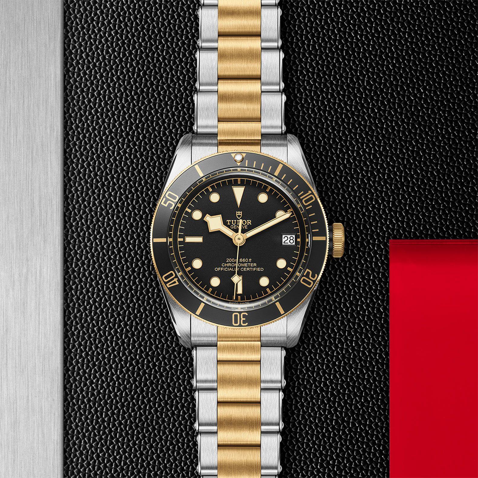 BLACK BAY S&G 41 79733N - 0008
