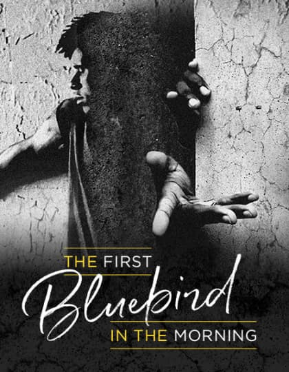 Artwork for The First Bluebird in the Morning