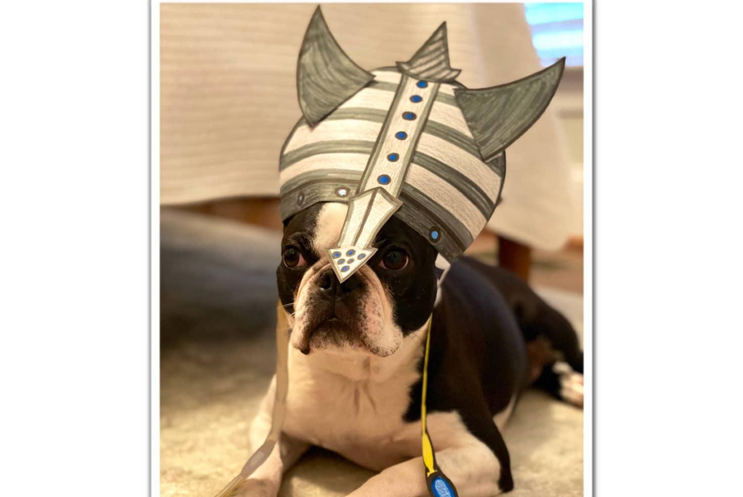 Make Your Own Opera Helmet 1
