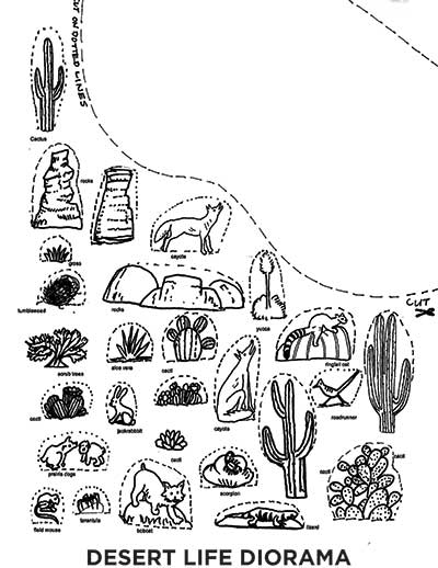 Desert Life Diorama Template