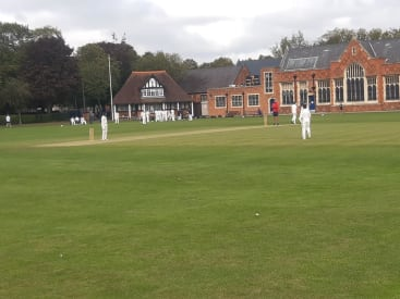 Year 8 House Cricket featured image